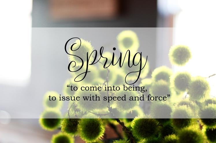 Spring.logo.17